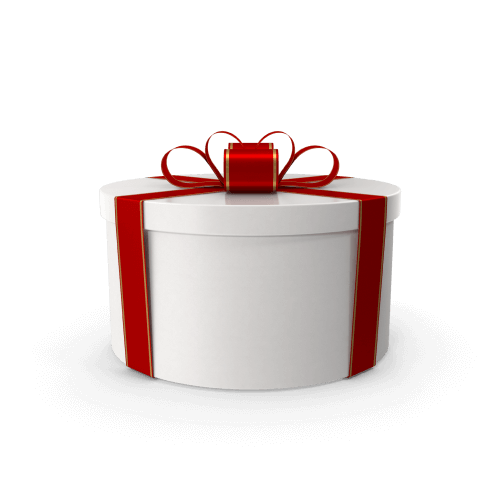 Click on this picture with a gift and find out what kind of gifts you will receive when ordering a site with us!